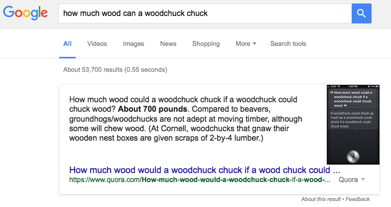 search result for: how much wood can a woodchuck chuck