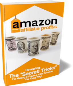 Amazon Affiliate Profits book