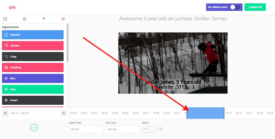Video to GIF Image Editor